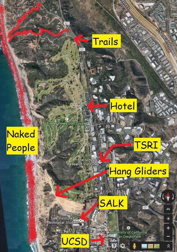 torrey-pines-trail-3